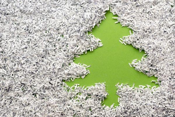 albero di Natale ecosostenibile