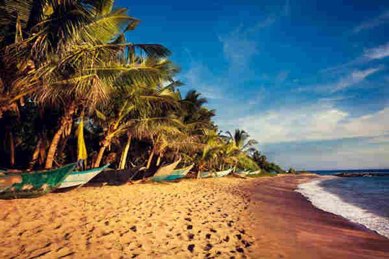 Come viaggiare sicuri in Sri Lanka