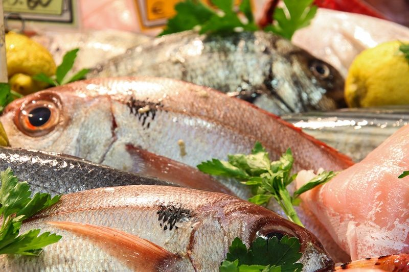 dove comprare pesce fresco e molluschi a Torino