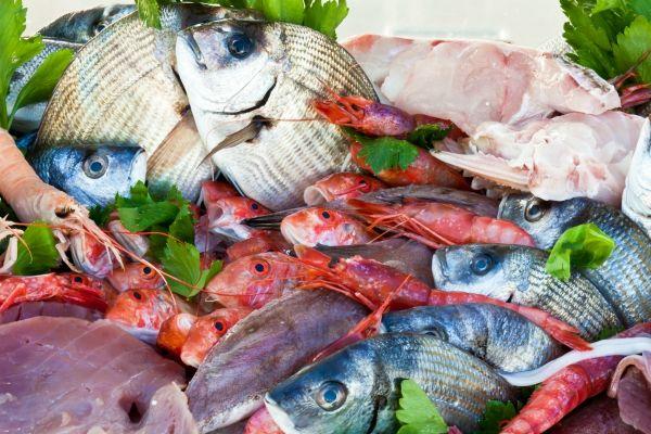 dove comprare pesce fresco e molluschi a roma trovami