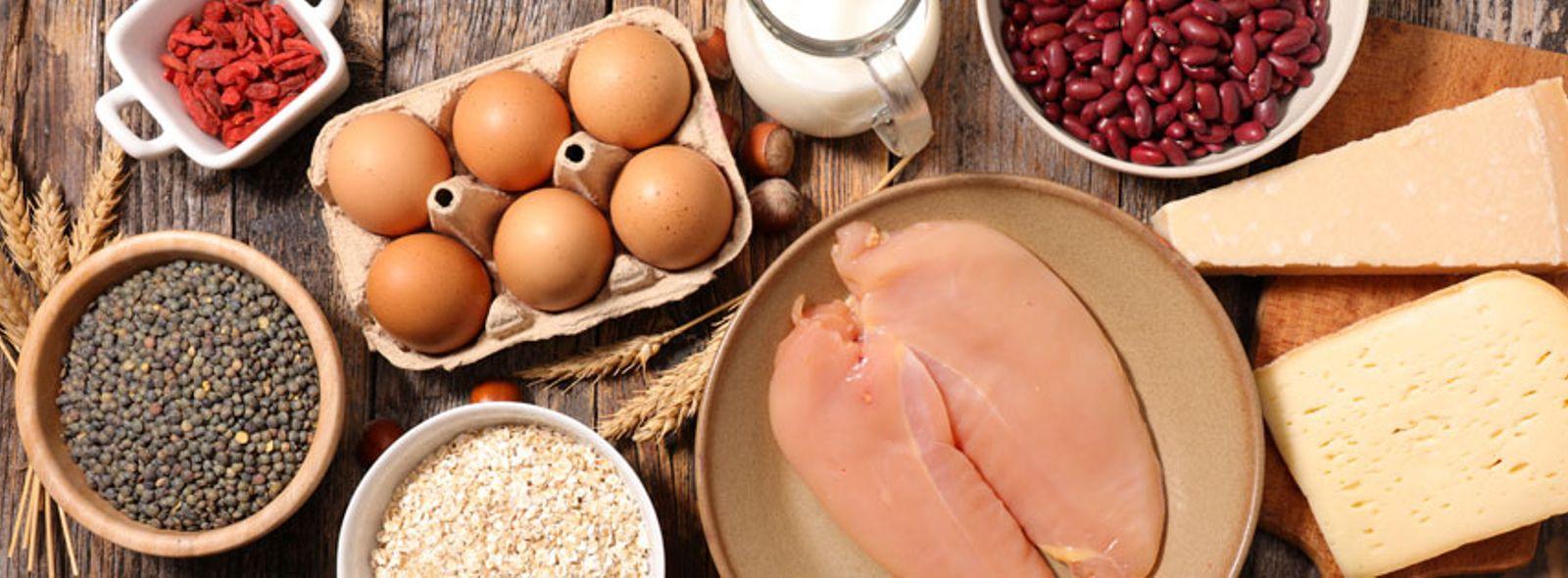 Gli alimenti ad alto indice proteico
