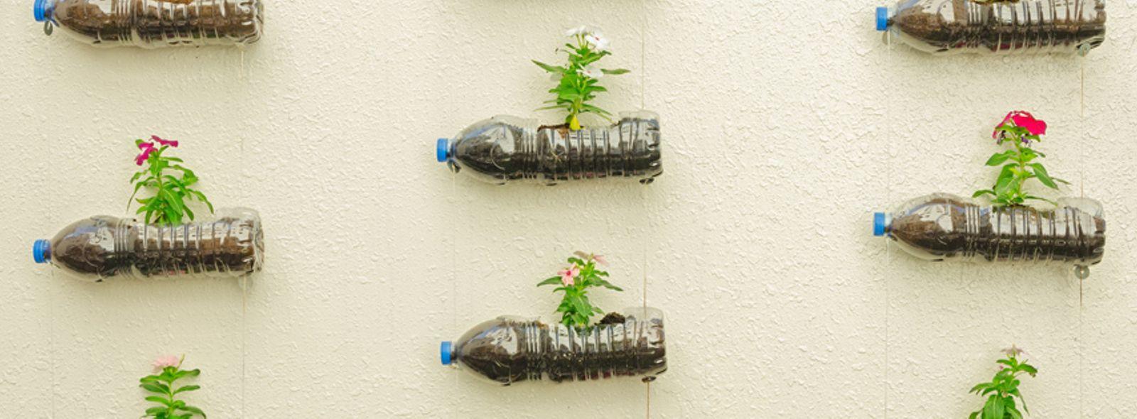 Come riciclare bottiglie plastica