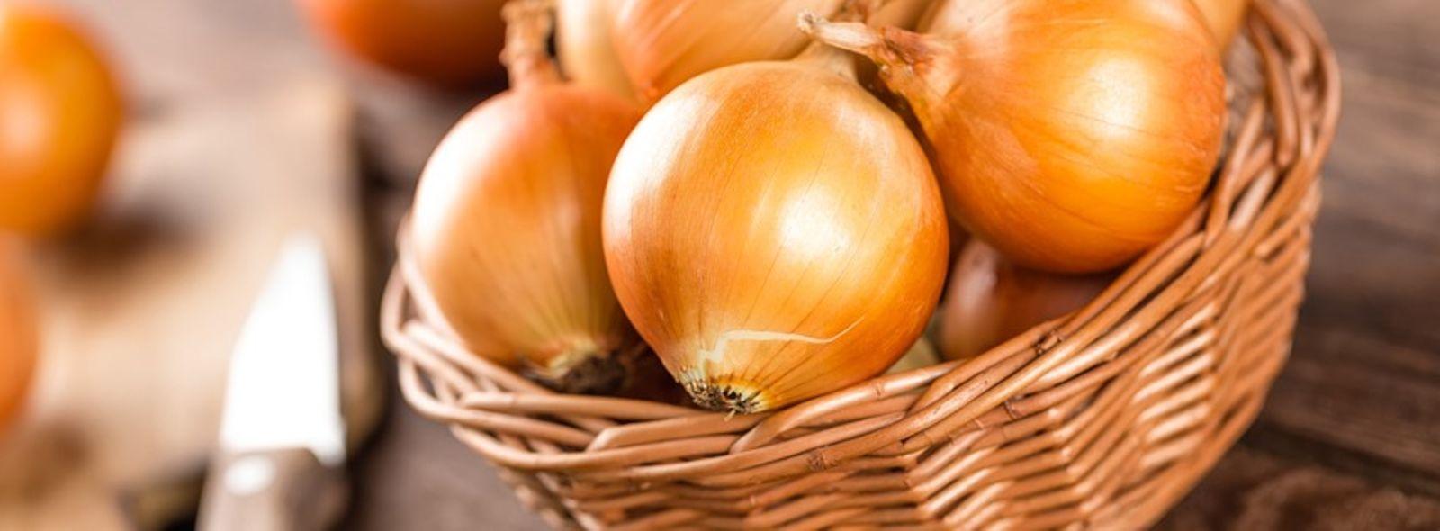 Come conservare la cipolla