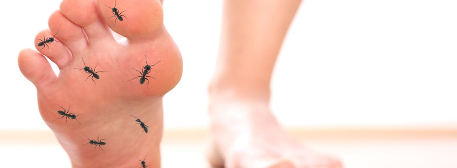 Formicolio piede