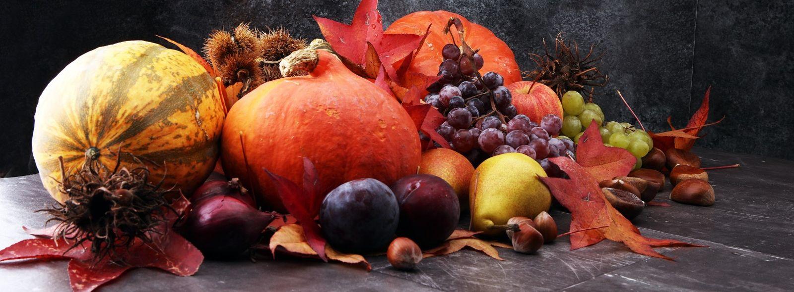 Risultati immagini per frutti autunnali
