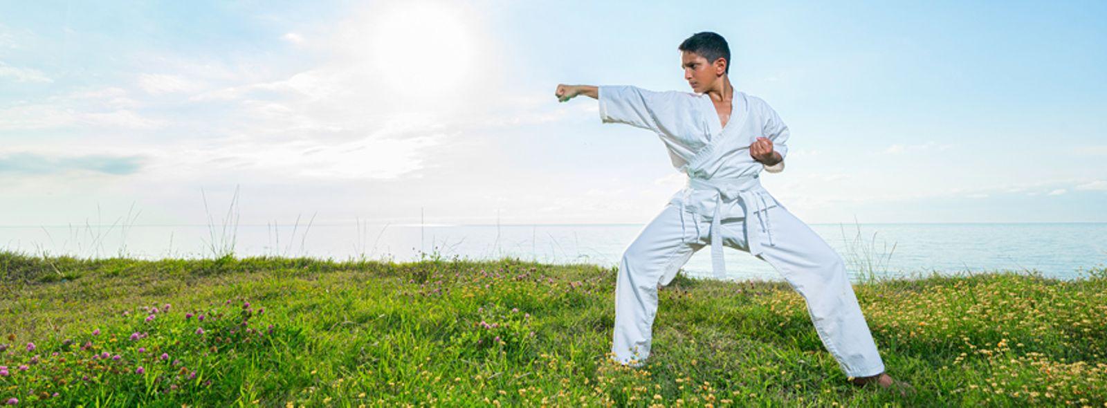 Imparare il kung fu