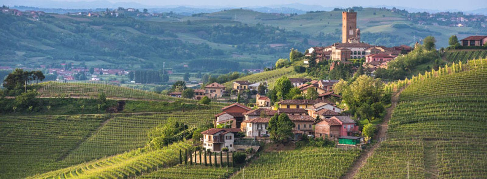 I migliori itinerari enogastronomici del Piemonte