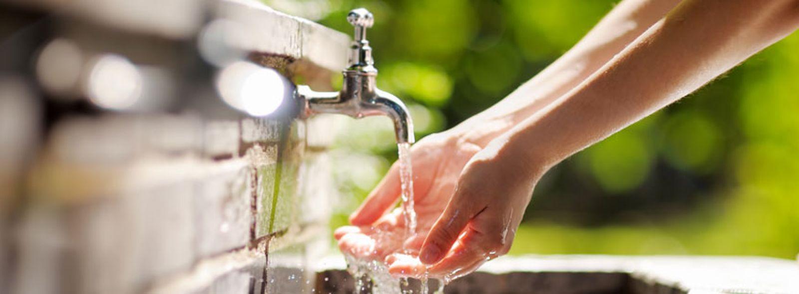Come eliminare odore di pesce dalle mani