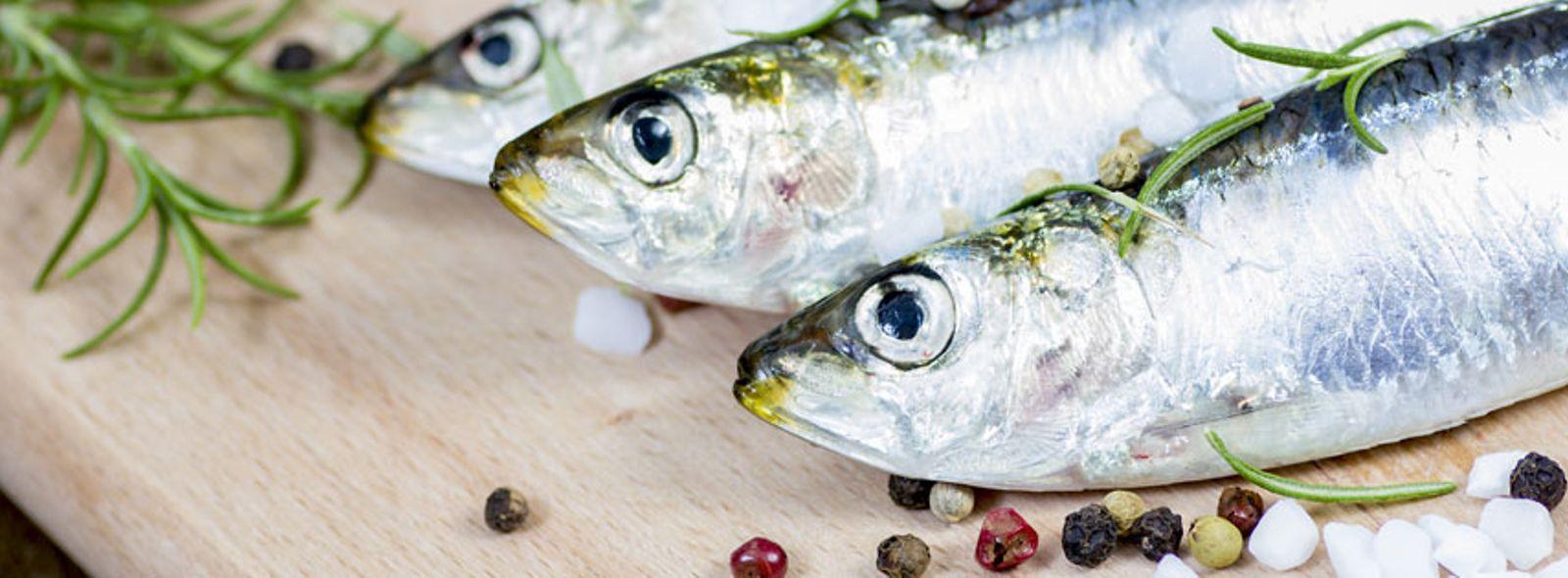 Fare la dieta mangiando pesce azzurro