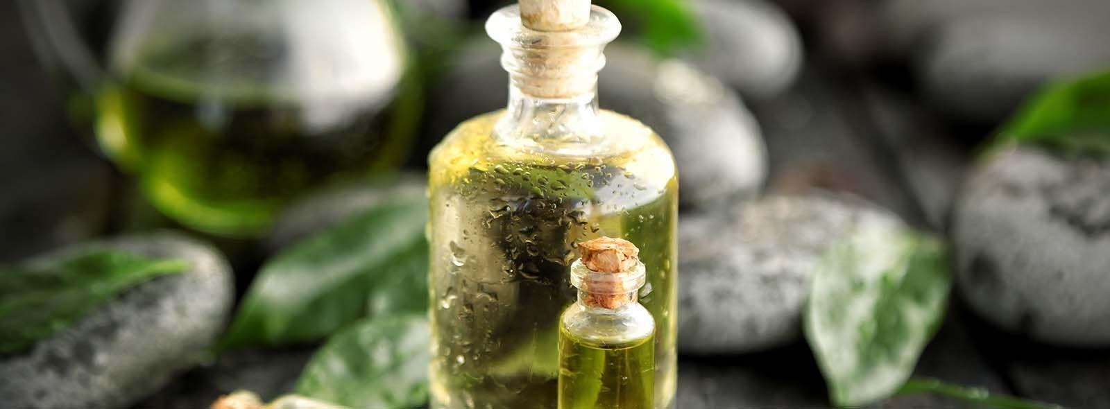 Tea Tree Oil per uso interno: a cosa serve