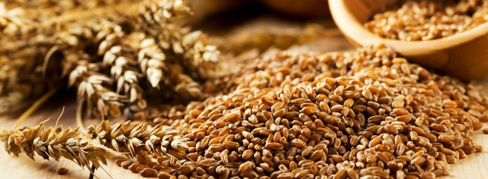 Tipi di grano