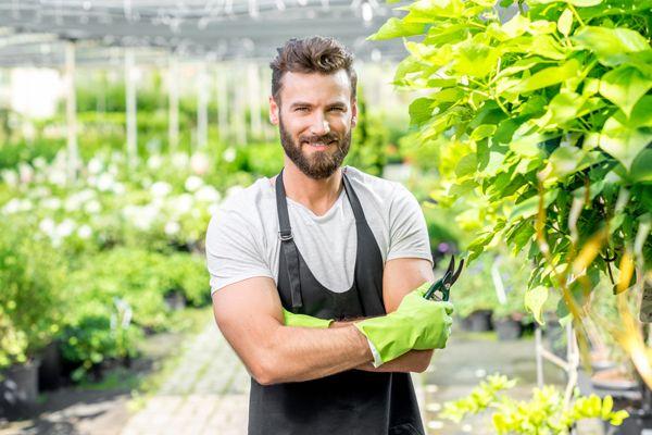come diventare giardiniere professionista