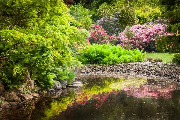 giardini giapponesi roma