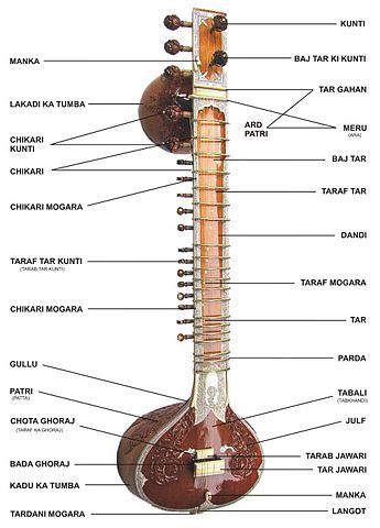 chitarre indiane