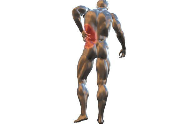 nervo sciatico maschile