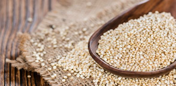 Come coltivare la quinoa