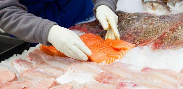 Dove comprare pesce fresco e molluschi a Roma