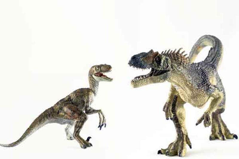 tirannosauro1